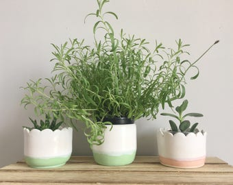 Scalloped Ceramic Planter / White and Mint Green Planter / Home Decor / Fresh and Modern Pottery