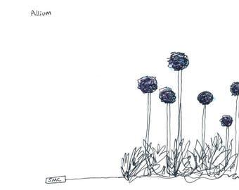 Allium Card