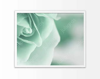 Mint rose wall art print Green flowers Printable poster photography Digital Instant Download