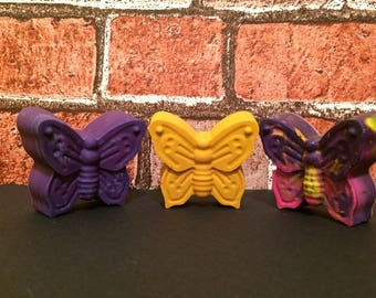 Chunky Butterfly and insect crayons