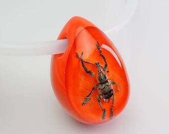 Bright orange lucite egg shaped necklace with real insect