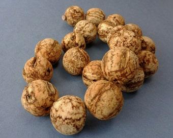 Mahogany Seed 20mm Rustic Lightweight Beads - Lot of 20