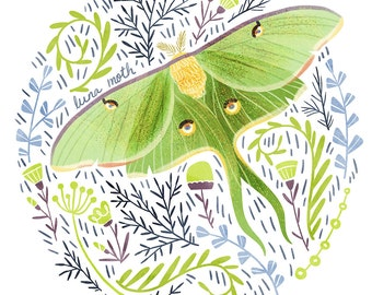 Luna Moth Art Print - square digital illustration by Stephanie Fizer Coleman