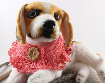 Cottage Chic Dog Collar, Tangerine Orange Dog or Cat Clothing Apparel, Pet Accessory, Pet Portrait Accessory Prop