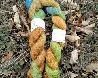 Lorna's Laces hand dyed sock yarn Andersonville...2 skeins