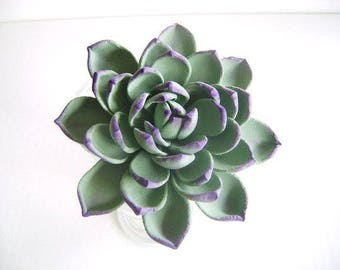 Succulent cake Topper and Cupcake Toppers Reserved Listing for lynnedano