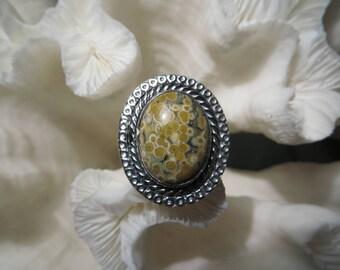 Beautiful Ocean Jasper Ring Size 8.5