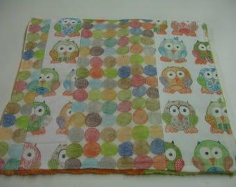 Short Legged Owls Minky Burp Cloth 11 x 10 READY TO SHIP On Sale