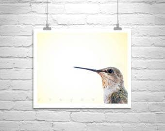 Hummingbird Photo Art Print, Bird Photography, Bird Picture, Gift for Bird Lovers, Nature Photography, Yellow Art, Cute Birds, Wildlife Art