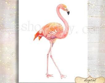 Watercolor Flamingo Print Digital Wall Art Animal Bird Printable Frame Watercolor Nursery Home Wall Decor Instant Download 5x7 8x10 11x14