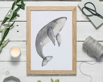 Humpback whale art - whale print - watercolour animal art - watercolor whale illustration