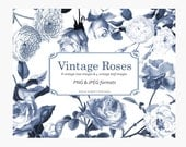 Vintage Roses Clipart, Instant Download Clip Art, 8 Vintage Roses Illustrations & 4 Vintage Rose Leaf Illustrations – Soft Blue