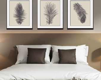 Feathers (Series A3) Set of 3 - Art Prints (Featured in Charcoal on China) Nature Woodland Inspired