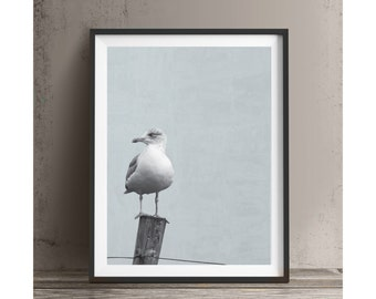Seagull Bird Animal Print Printable Art Wall Art Typography Print Instant Download Art Print Poster Home Decor Kids Room