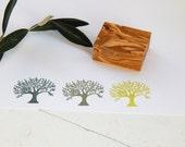Olive Tree Olive Wood Stamp