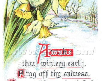 Instant Download Vintage Easter Card Reproduction Daffodils and Snow