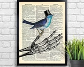 Skeleton hand Bird Top Hat Art Print  Skeleton Birds Dictionary Art Print, Skeleton Hand Wall Decor, Skull Poster  Cool Bedroom Art 032