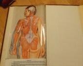 Vintage Medical Anatomical Chromographs book, Medical book, Old Medical oddity, Anatomical Charts, Medical gift, Dr. Reserved!!! Cindy