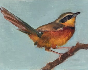 Collared Crescentchest - Original oil painting - 5 x 7 inches