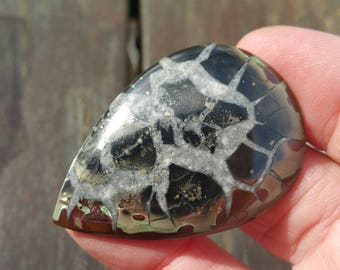 44mm Septaria pyrite Agate cabochon or Septarian drop pear 44 by 30 by 5mm 47ct