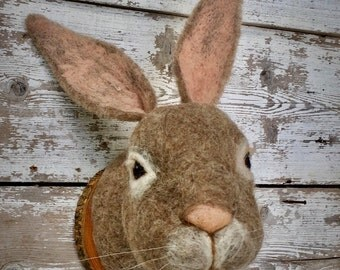 supercute needlefelted rabbit  head- style faux taxidermy by feltfactory