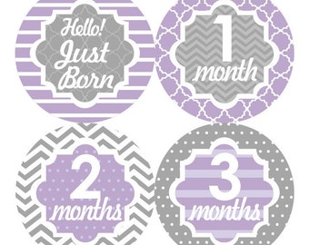 Baby Month Stickers, Monthly Baby Stickers, Baby Girl First Year Stickers, Baby Milestone Props, Baby Shower Gift Stickers, Grey Purple 072G