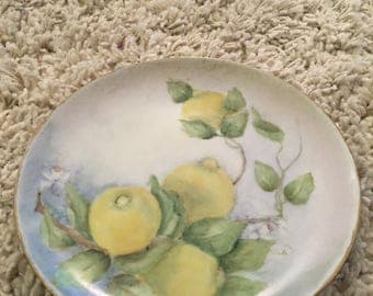 Mid century porcelain cina hand painted plate