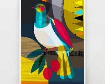 New Zealand, Kereru, Wood Pigeon, bird, print