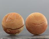 Circle Coin Pair Natural Jasper Cabochons Stones for Earring and Jewelry (CA6776)