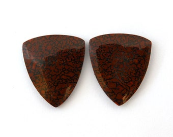 Dinosaur Bone Designer Cab Gemstone Pair 20.4x23.7x3.7 mm 28.9 carats Free Shipping