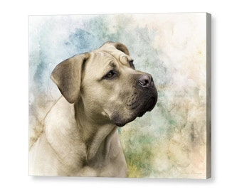 Italian Mastiff, Cane Corso Dog Portrait Pastel Colors, Large Dog Fine Art Photography Giclee Gallery Wrap Canvas