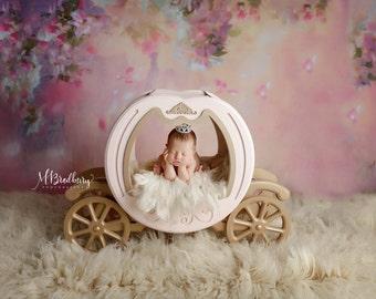 5ft x 5ft + Photography Backdrop - Sleeping Beauty Princess Backdrop, Floral Backdrop, Carriage Backdrop