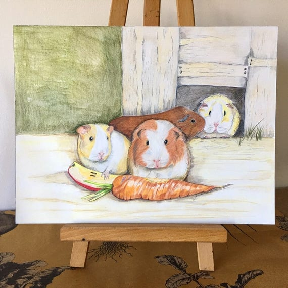 Limited Edition, Guinea Pigs, Cavy Print, Pet Commission, Guineapig Print, Certificate of Authenticity, Guineapig commission, Pet Drawing