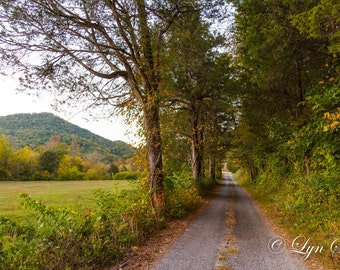 Tennessee, Cades Cove-  Nature, landscape, fall, autumn, fine art, trees, art, country road, rustic, home decor, mountains