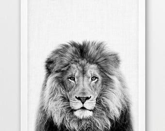 Lion Print, Lion Photo, Safari African Animals Photography, Lions Nursery Wall Art, Black White Photo Print, Kids Room Printable Home Decor