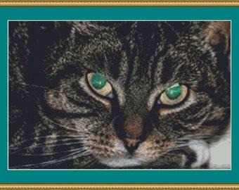 Green Eyes Cross Stitch Pattern