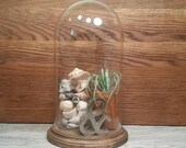 SALE - Tall Glass Dome with Wood Base - 10""