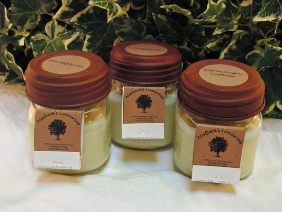 Buy 3 Get 1 Free 100% Soy 8 oz Candle Pick your Scent Winter scents