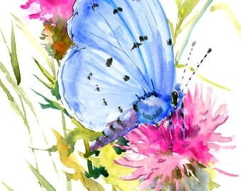 Holly Blue Butterfly, original watercolor painting, 9 X 12 in,sky royal  blue pink green wall art, animal art,