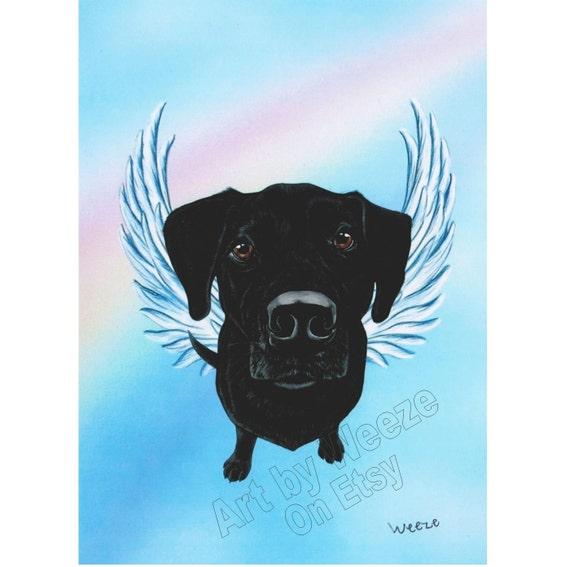 Black Lab Black Lab Angel Black Labrador Retriever By