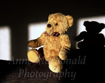 Digital Download,Teddy,Teddy Bear,Lijah,Teddy Bear Shadow,Soft Toy,Teddy Fine Art,Teddy Room Decor,Stuffed Toy,Bear On Chair,Nursery Art