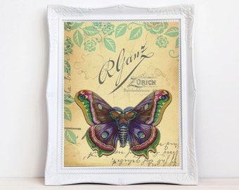 Vintage moth print, moth art, Romatic print, colorful wall decor, shabby decor, vintage style print, travel print, butterfly print