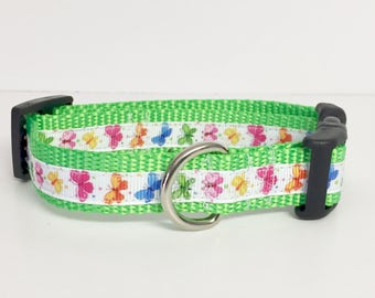 """3/4"""" wide Butterfly- Dog Collar - Garden - Spring - Summer - Cute - Dog Gift - Pet -"""