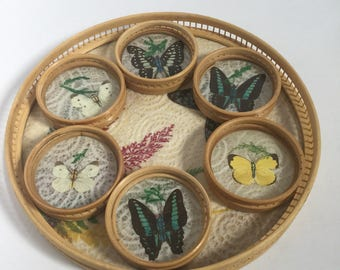 7 Piece Rattan Butterfly Coaster and Serving Tray Set