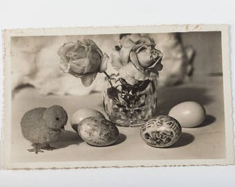 Antique photo postcard from 30s - Chick and eggs - Easter Card - Old Estonian Postcard