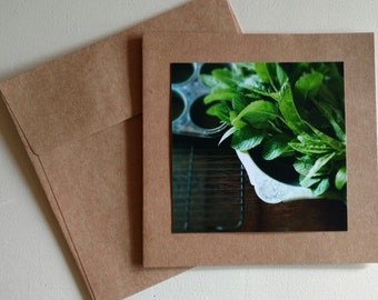 Mint from Mama's Garden - Original Photography Greeting Card