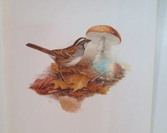 50% Off Estate Sale Vintage White Throated Sparrow 1970 Frameable Picture, Wall  Art Print of Bird Watercolor by  J.F. Lansdowne Item 499