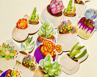 Bag of Succulent Stickers (15 count)