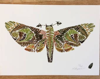 "STUDIO SALE Ghost Moth 5x7"" Giclée Print"