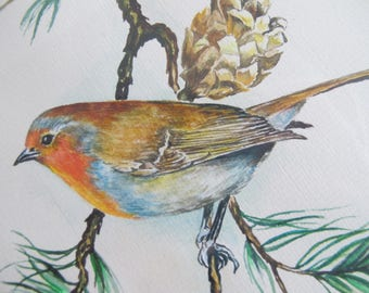 Vintage original watercolor of a Robin. Signed by artist Fife Plane.